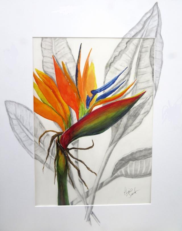 bird of paradise green copy