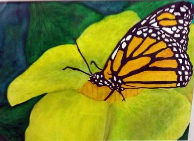 butterfly-watercolour