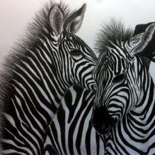 cropped-zebras-for-web.jpg