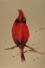 Red Bullfinch - Framed Watercolour $60