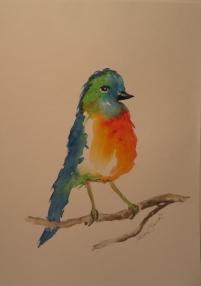 Happy Birdy - Framed Watercolour $40