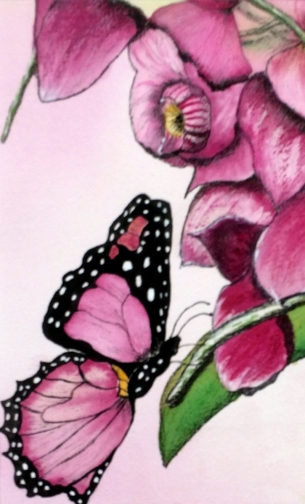 Reflections of a Butterfly - framed watercolour - $100