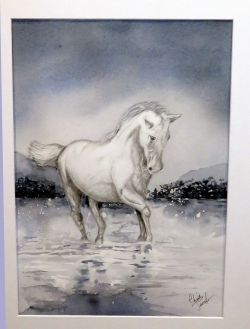 Horse-play - framed in silver 43 x 52cm - Watercolour and graphite $180