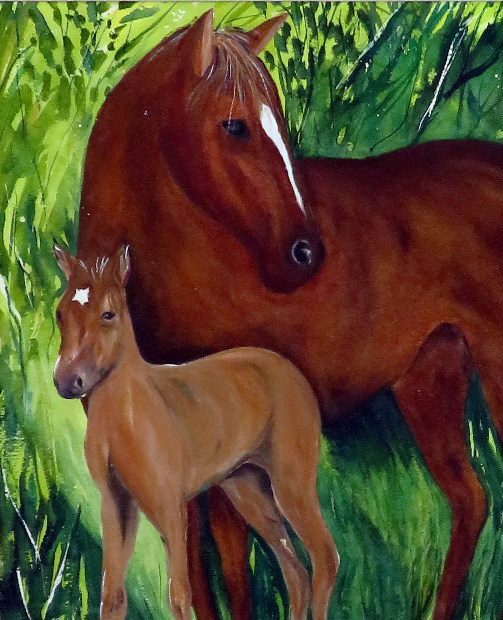 Mother & Foal (1)